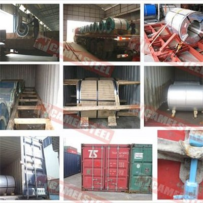 PPGL In Export Packing