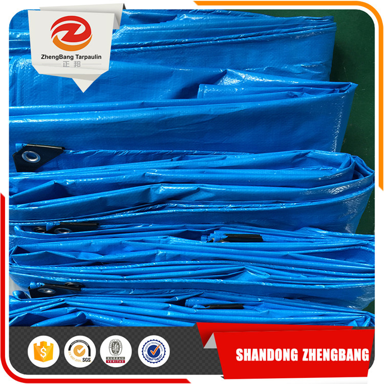 Blue PE tarpaulin Plastic Sheet factory