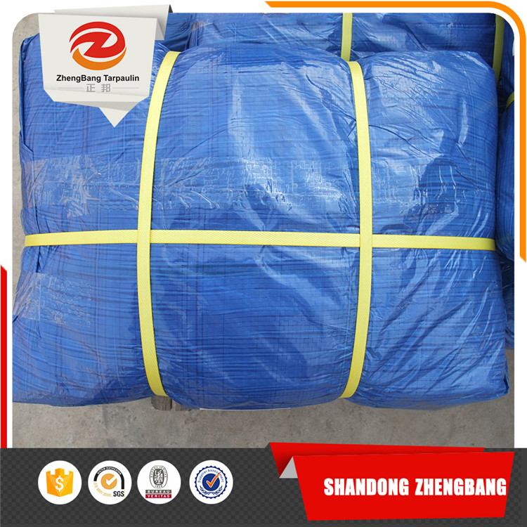 PE tarpaulin Canvas sheet with various specifications