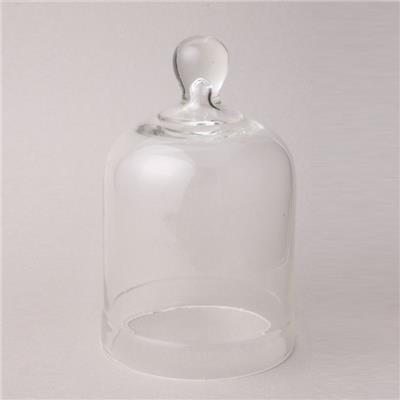 Clear Glass Bell Jar With Knob Top