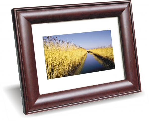digital photo frame(DPF)