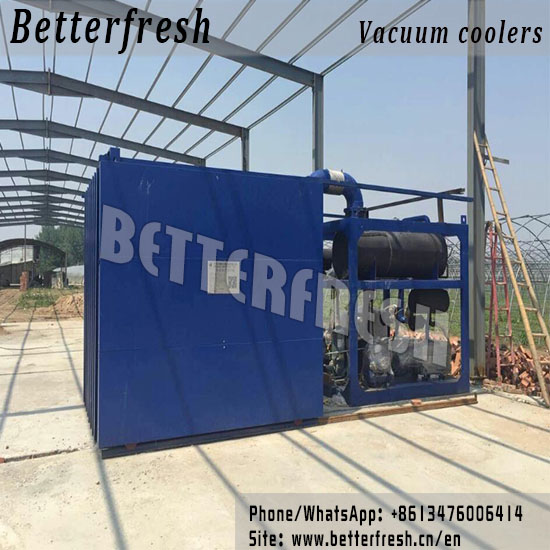 China Manufacture and Installation of fast Vegetables Cooling Vacuum Cooling PreCooling Hydro Cooling Forced Air cooling