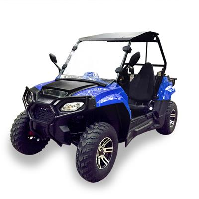 Adult 200cc Quad