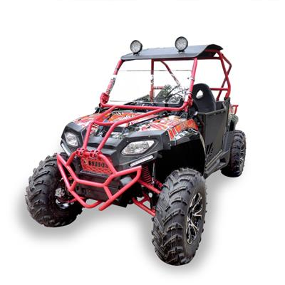 Water Cooling 250cc Utility Vehicle