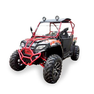 Water Cooling 250cc Dune Buggy