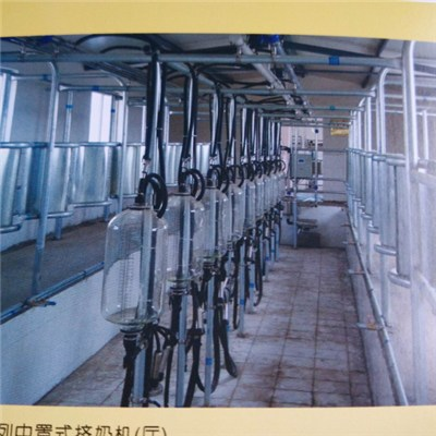 Dairy Farm Automatic Milking Machine System, Milking Parlour