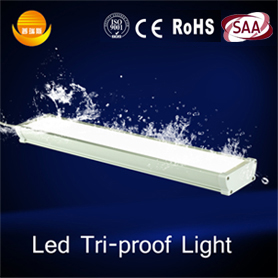 4ft Waterproof Led Lights