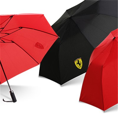 2 Fold Automatic Umbrella