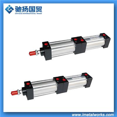 Customize Stainless Steel Pneumatic Cylinder