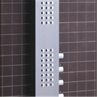CICCO New Products PVC Shower Panel SP1-025