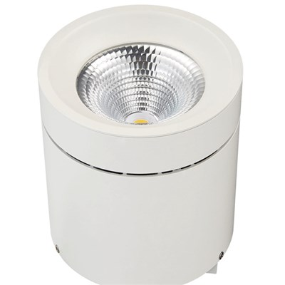 30W COB Surface Mounted Downlight