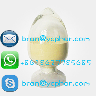 China Factory Price Testosterone Base