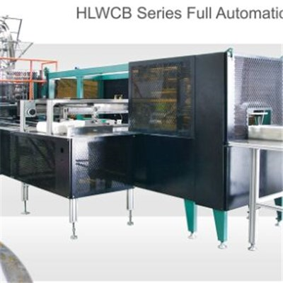 Fast Speed And Automatic Container Packing Machine