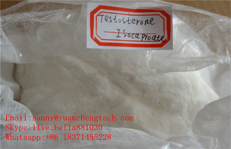 Bulking Cycle Steroids Testosterone Isocaproate