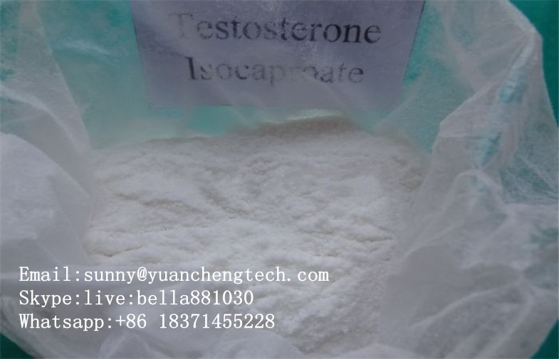 Raw Hormone Steroid Testosterone Isocaproate for Fat Burning