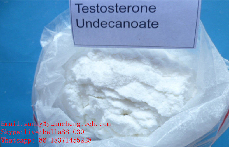 Pharmaceutical Chemical Hormone Steroid Powder Testosterone Undecanoate