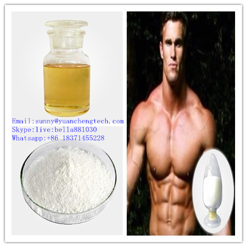 Bodybuilding Raw Powder Testosterone Undecanoate in Stock