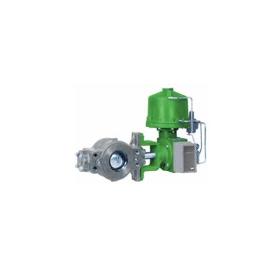 Fisher V250 Ball Valve