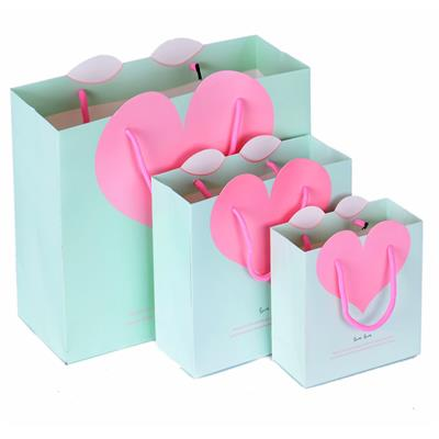 Customized Paper Present Bag