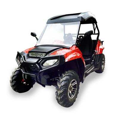 Adult 200CC Dune Buggy