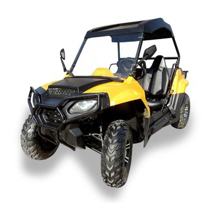 Adult 200CC Utility Vehicle