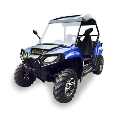 Adult 200CC Side By Side UTV