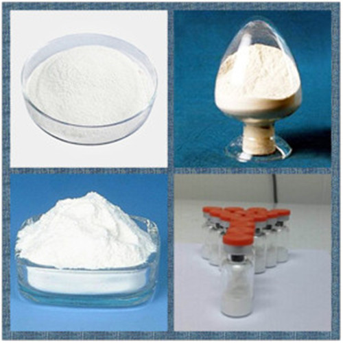 Product Name Tetracosactide Acetate