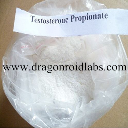 Steroids Powder Testosterone Propionate for Pre-Mix Oil Making www.dragonroidlabs.com