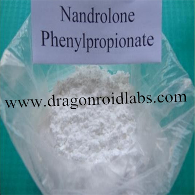 Injectable Oil Nandrolone Phenylpropionate 200mg/Ml www.dragonroidlabs.com
