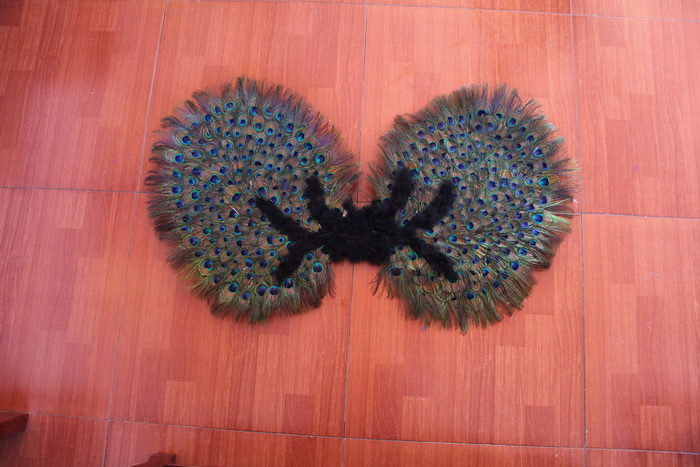 feather angel wings for sale - China supplier W-1007