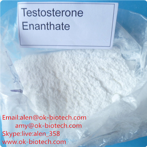 Buy 99% High quality Testosterone Enanthate / Test E White Powders For Muscle Growth CAS 315-37-7 from China