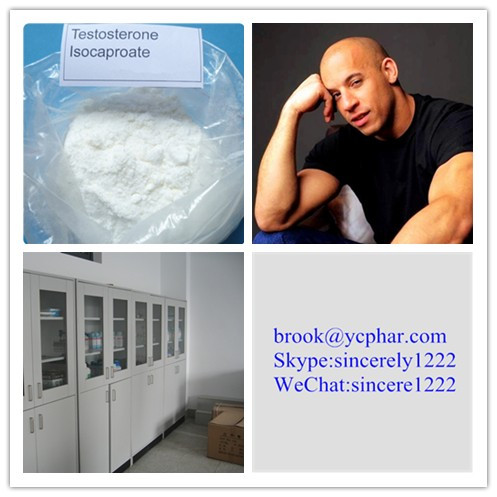 CAS 315-37-7 Testosterone Enanthate /brook@ycphar.com