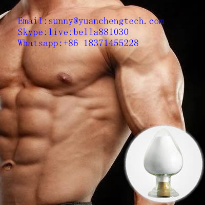 Oxandren 53-39-4 Powder Anavar for Combat Involuntary Weight