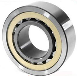 NF Series Cylindrical Roller Bearings