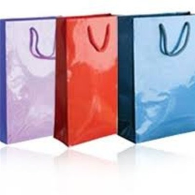 Diversified Latest Designs High Gloss Paper Bag