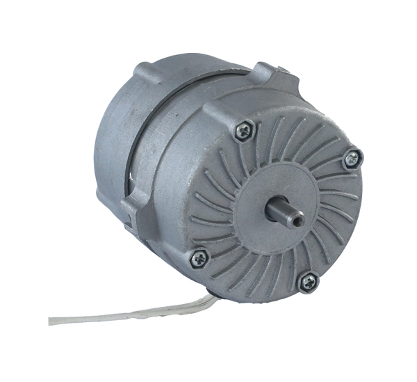 Micro AC Electric Motor