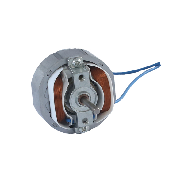 Single phase asynchronous  induction motor