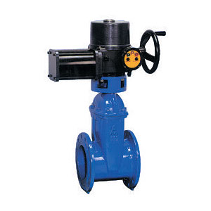 Electro Wedge Gate Valve