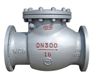 Flange Swing Check Valve