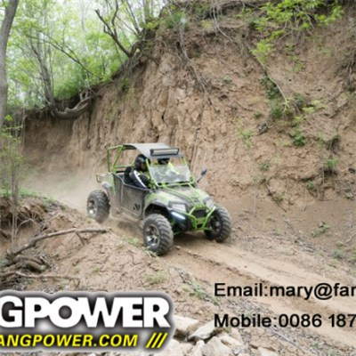 China 2 seat 400cc off road racing dune buggy for sale