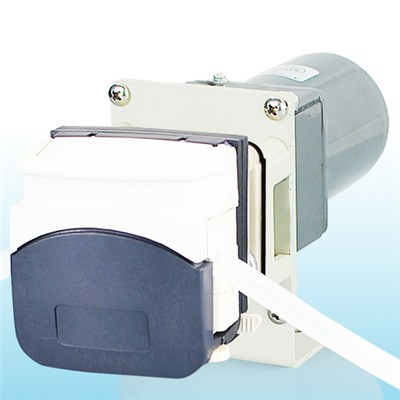 Programmable Step Motor Peristaltic Pump OEM309/313D