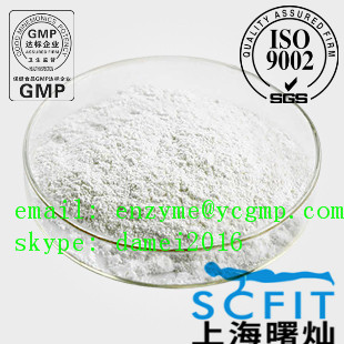 99% Purity Muscle Building Steroids Androsta-1 Powder