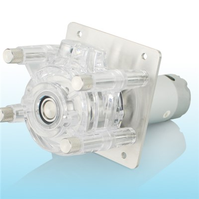 Mini Peristaltic Pumps For Chemical And Biological Equipment OEM204/ZN25
