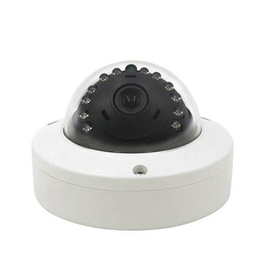 WIP10G/13G/20G-AG10 Metal Housing Ir Led Onvif 2.3 Cmos Sensor Dome Night Vision Security Ip Camera