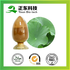 Lotus Leaf Extract Can Regulate the High Blood Pressure, Promote Blood Circulation