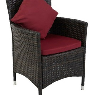 KD RATTAN Wicker Chair With Cushion And Pillow Aluminum Frame