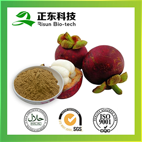 natural extract Mangosteen Extract powder