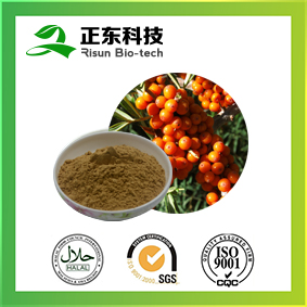 GMP Factory Pure Natural Seabuckthorn Extract Powder