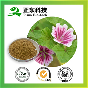 Mallow Extract mainly treat dyschizia and oliguria