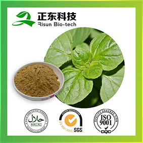Origanum Herb Extract for antibacterial and improve immune